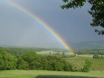 Afton Mountain Vineyards rainbow