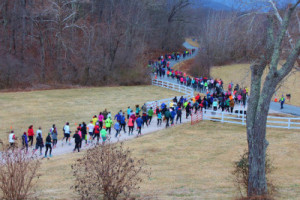 Cardinal Point 1 winelovers 5k crowd road image