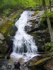 Crabtree Falls - Lisa photo