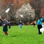 Rockfish Valley Kite Festival image