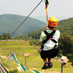 on-the-zip300px